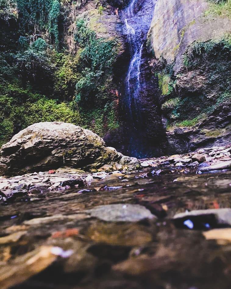 chadwick fall shimla