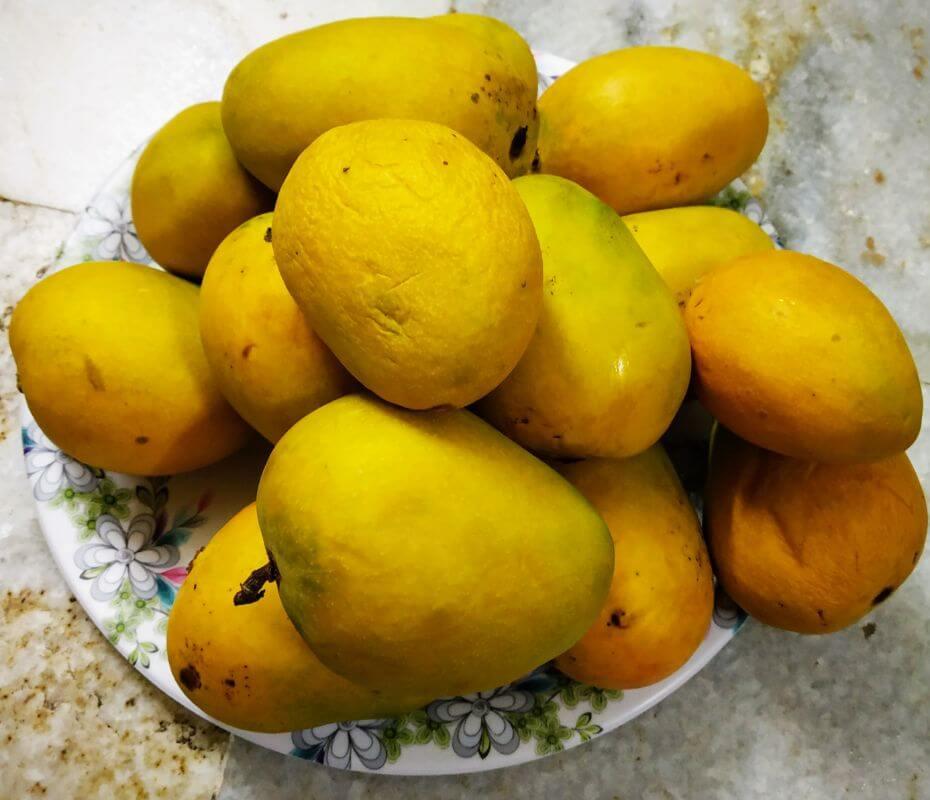 Devgad Haapus Amba - Alphonso Mangoes