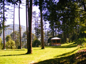 dhanaulti tourism