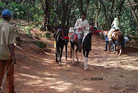 horse riding matheran