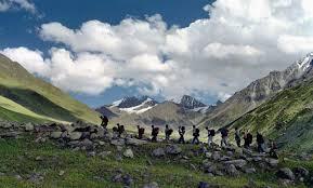 Nagtibba trekking
