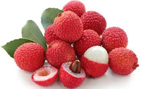 Litchi - Are they causing problem to growers?