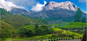 5 Best Hill Stations – Best Tourist Places in Kerala