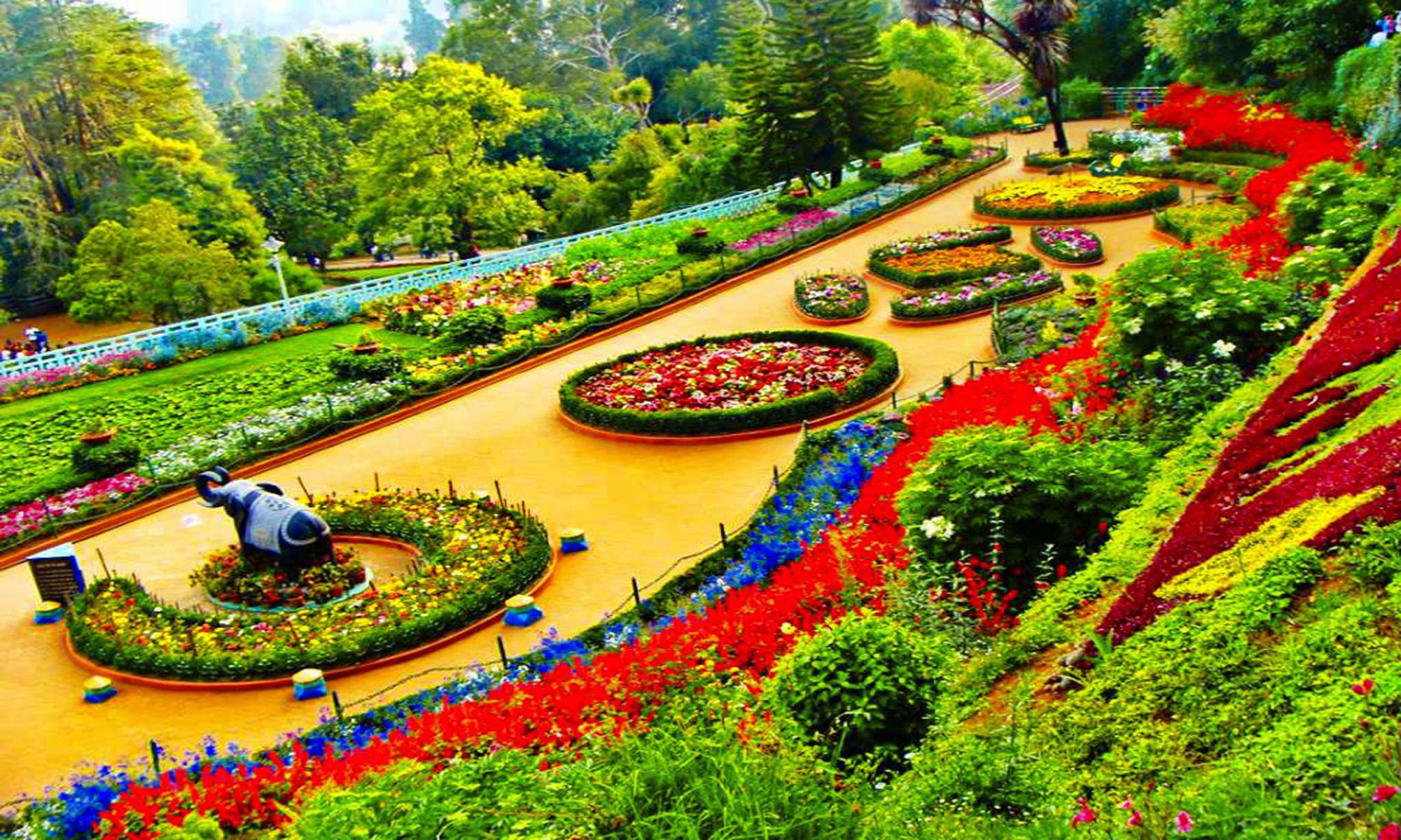 Botonical Garden, Ooty