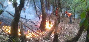 Uttrakhand forest fire – Big fight going on to control!