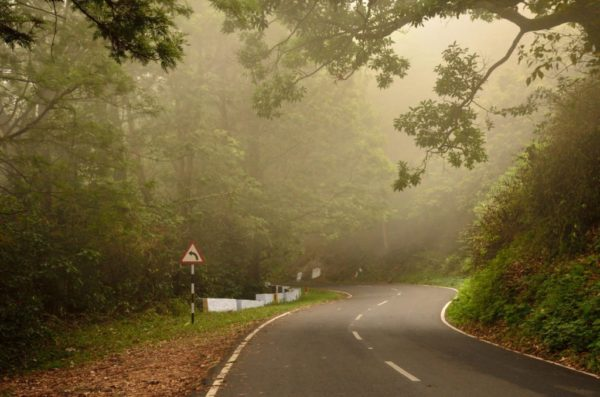 10 Incredible Places to Visit in Valparai, the Unspoiled Beauty of Anamalai Hills!